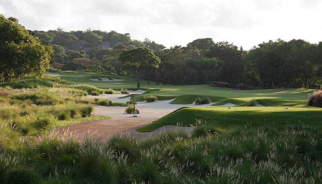 golfnew1